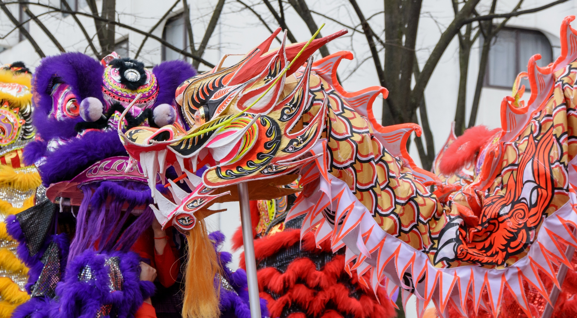 Nouvel an chinois 2015 - Paris 13e